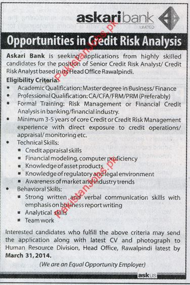 risk analyst job description