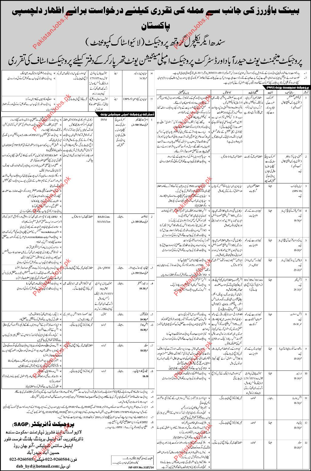 15779_1_31139 Job Application Form Sindh Government on free generic, blank generic, part time, sonic printable, big lots,