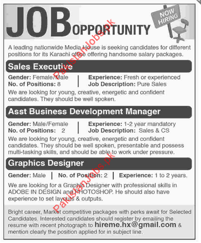 Sales Executive Assistant Business Development Manager Graphic. Sample  Business Manager Job Description ...